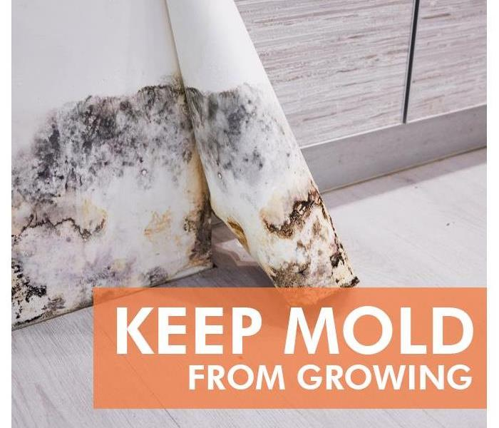 Mold Remediation How Do I Keep Mold From Growing in my Bathroom?