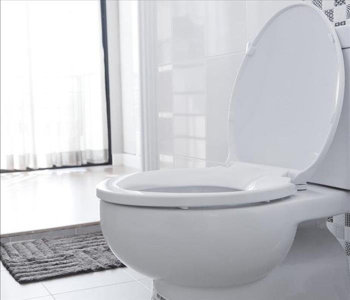 Water Damage The Non-Plumber's Guide to Replacing a Toilet