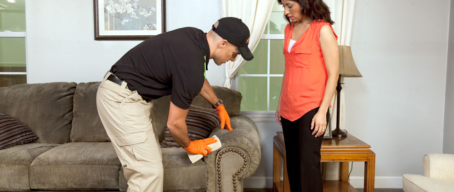 Greeneville, TN carpet upholstery cleaning