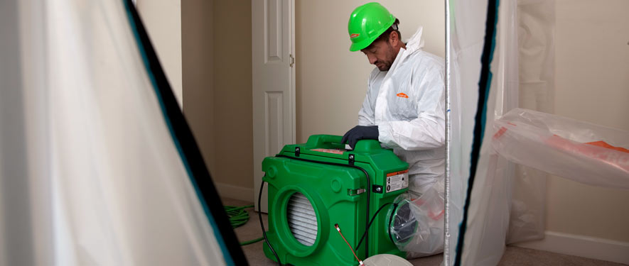 Greeneville, TN mold cleanup