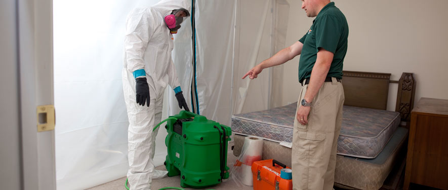 Greeneville, TN mold removal process